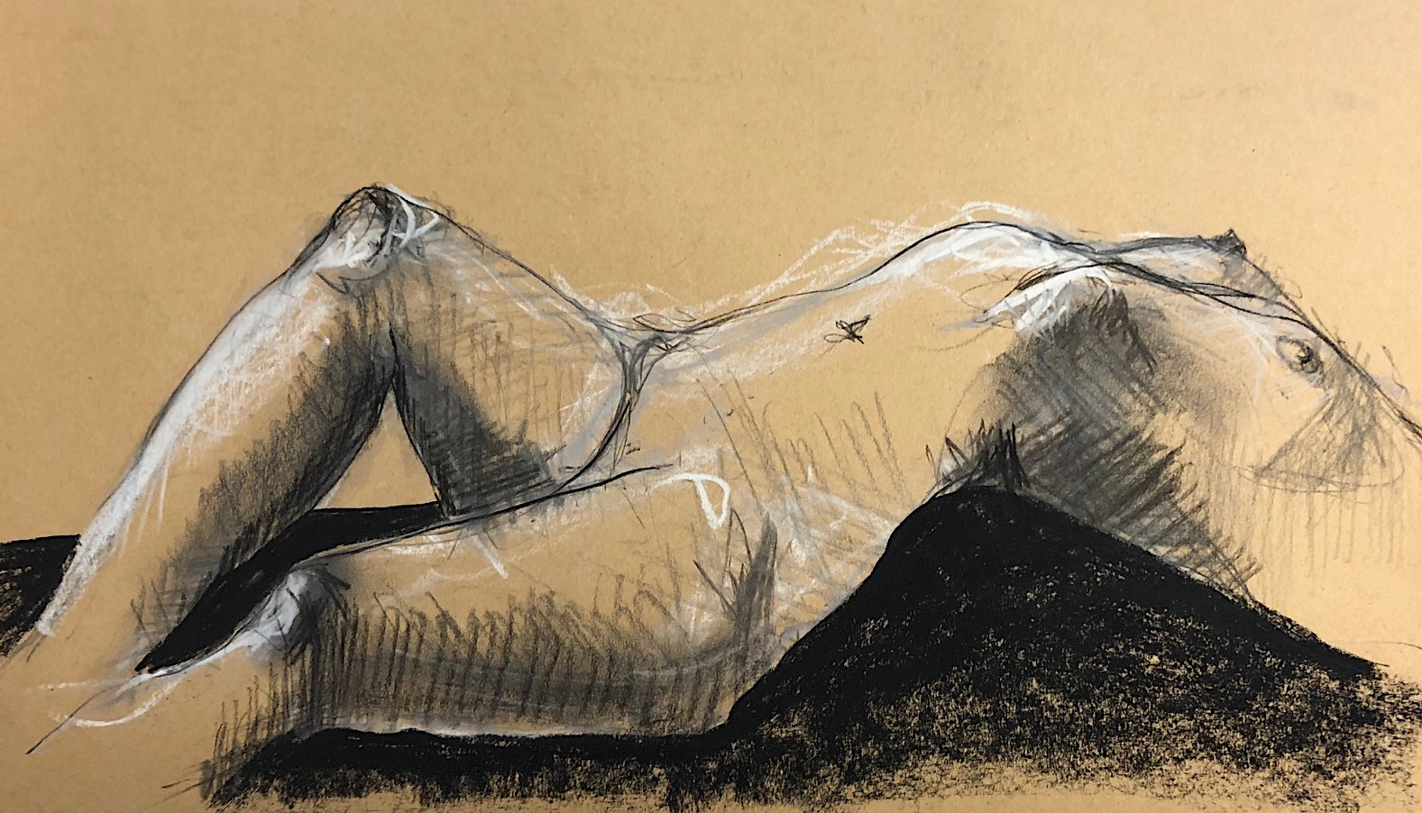 Graeme Gould, Charcoal on brown paper, 2018