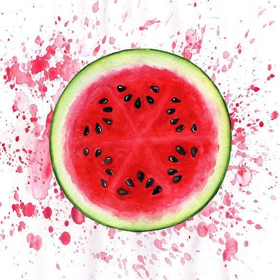 Drawn Watermelon – watercolour