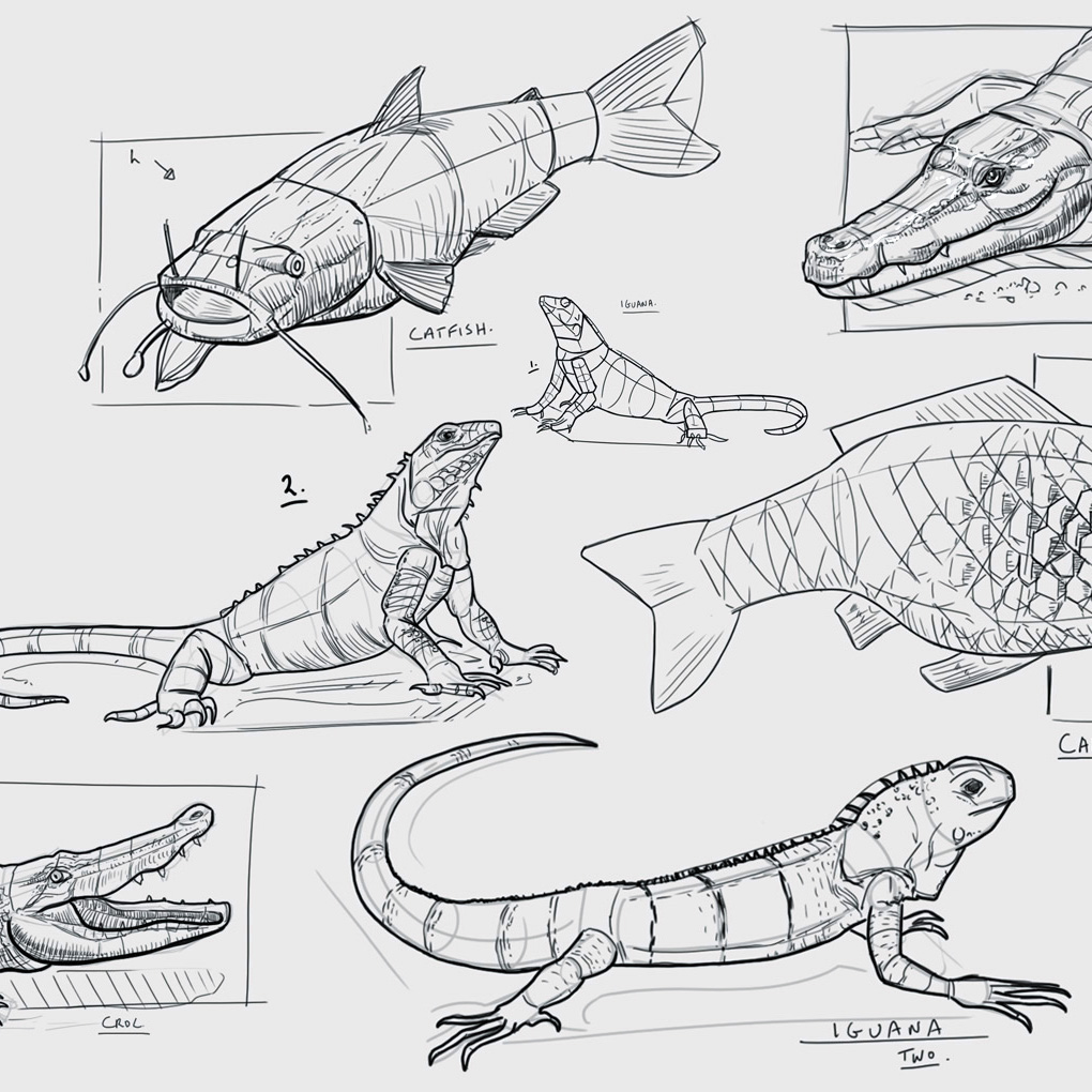 Example artwork – Drawing Animals Workshop 2020 – click to view class details