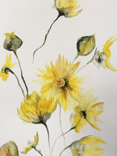 Watercolour Flowers – Eleanor Amiradaki