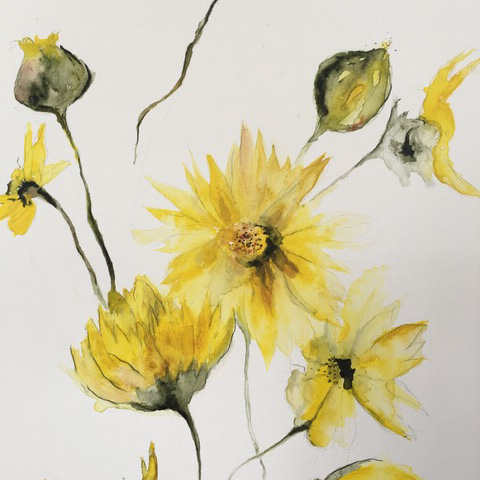 Tutor's artwork – Watercolour Flowers – Eleanor Amiradaki – click to view class details