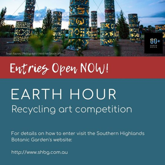 Sculpture in the Gardens - Earth Hour Recycling Art Competition 2020 flyer