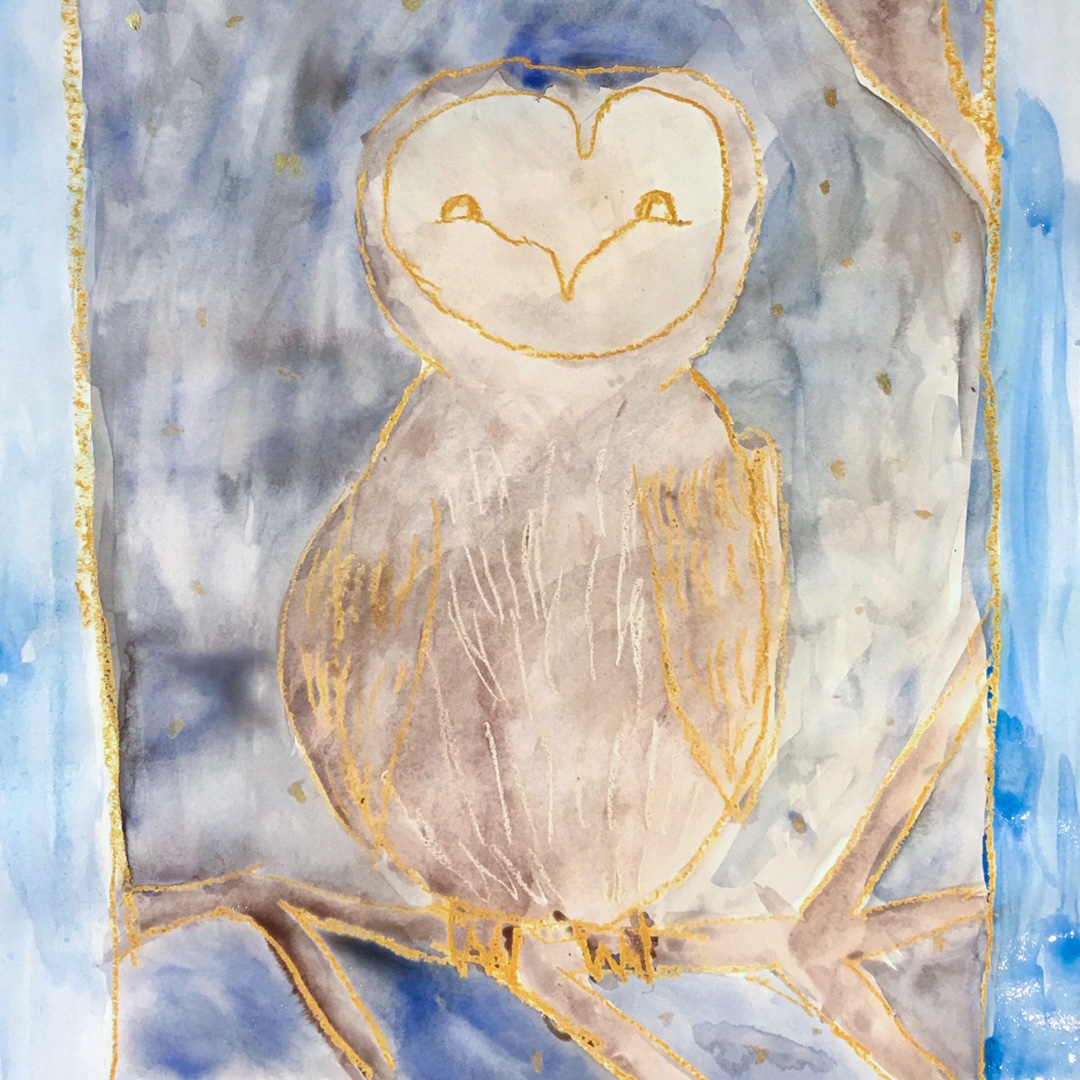 Class Image – Night Owls - Oil Pastels And Watercolour – click to view class details