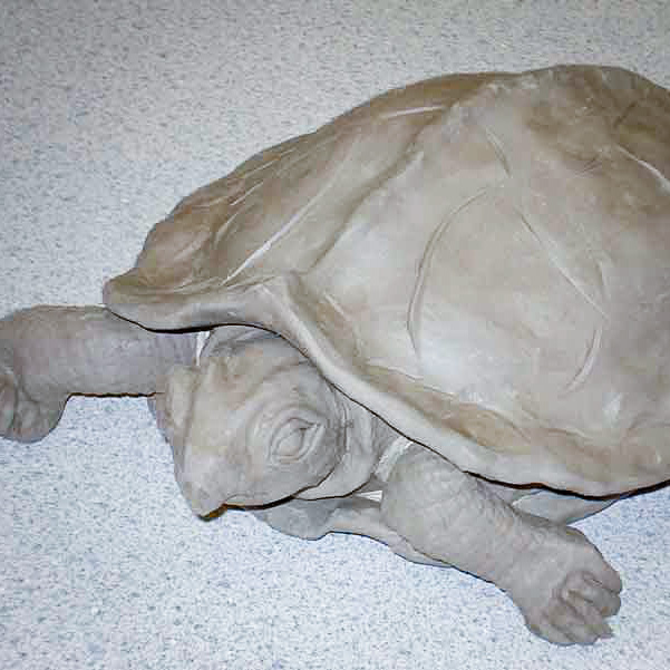 Class Image – Clay Turtle Sculpture – click to view class details