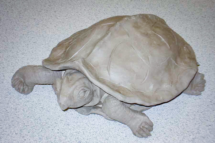 Class Image – Clay Turtle Sculpture