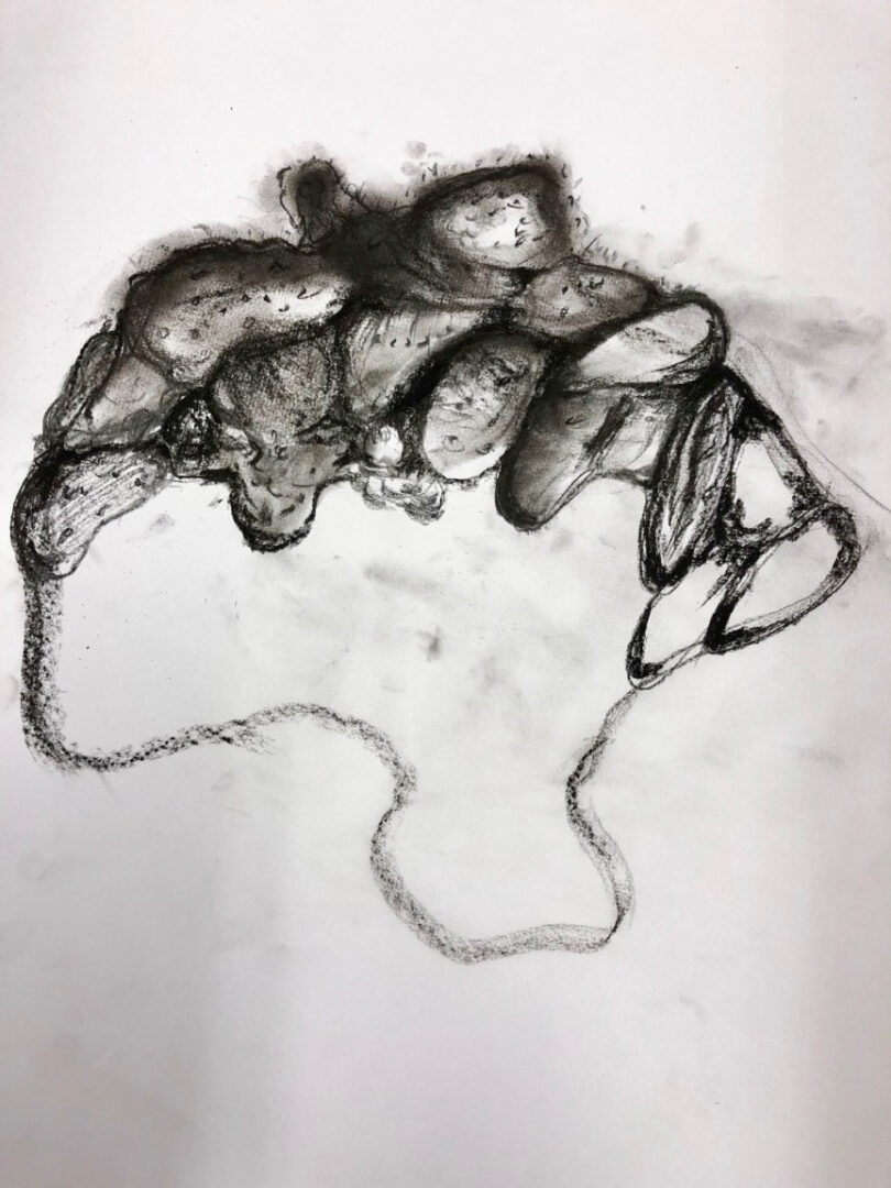 Teens Club 2021 – Student work: Drawing with Charcoal
