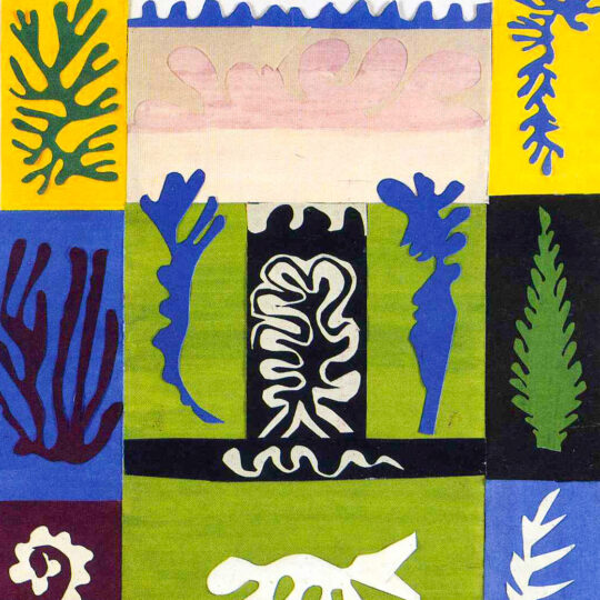 Class Image – Paper Cut Out - Matisse